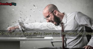 5 ways to stop Social Media Spam from Damaging Your Brand